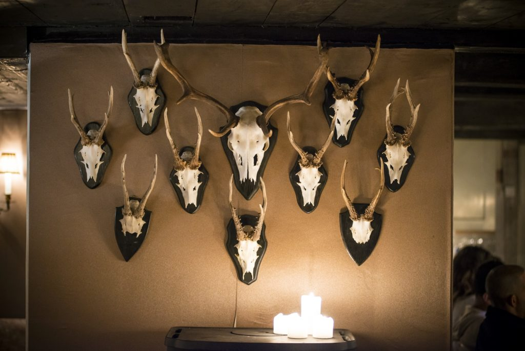 Hunting trophies at the Lodge